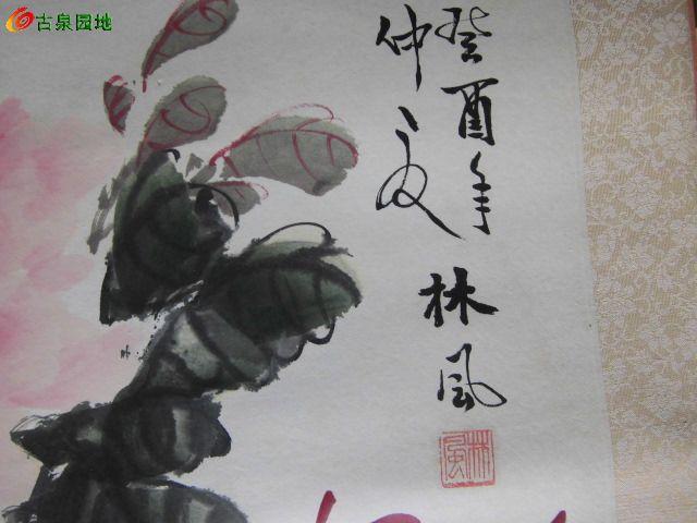 画家林风的国画牡丹